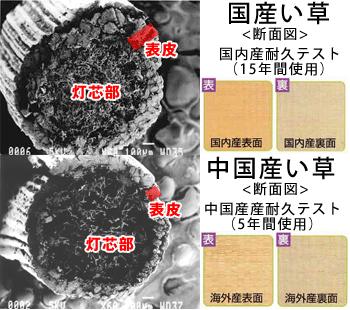 国産い草と中国い草比較