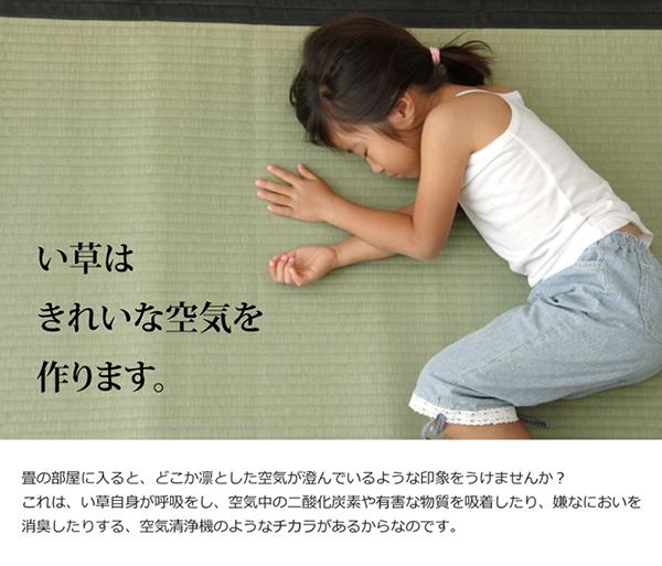 純国産 い草 上敷き カーペット 麻綿織 『清正』