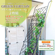 グリーンカーテン 2枚組